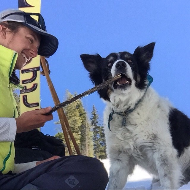 Grab your sticks and head for the hills! Arf! Arf!  Repost from @jacquelineknutson  #PandaPoles #PandaTribe #PandaDog