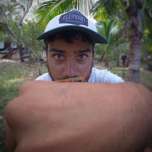 #lizard #lagartija #caribe #gorra #cap #elephant #elefante #jointheherd @elephantindumentaria
