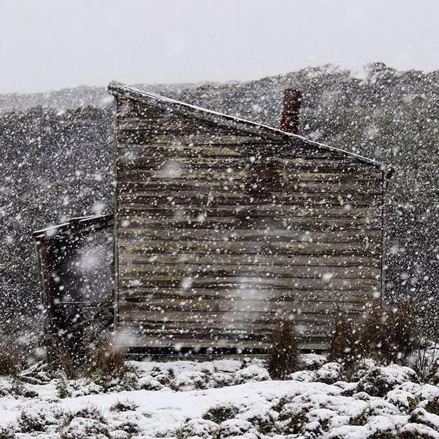Se vino la nieve en el rancho 3 amigos.
