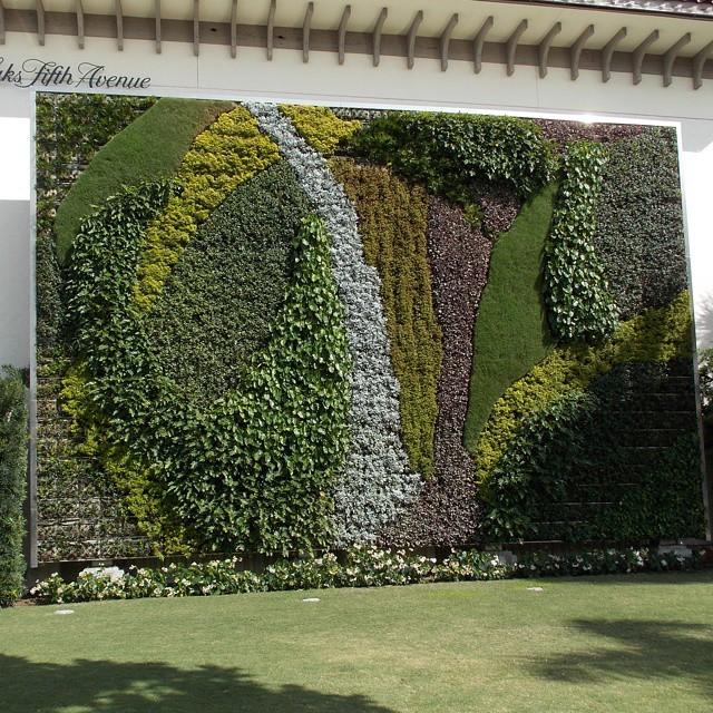 Caminando x Palm Beach, me encontre con este mural ecologico ubicado en una esquina del centro comercial. Y pensar que mi vieja me hacia comprar hilo de barrilete para sus enredaderas!!! Jaja #mural  #ecology #ecologico #verde  #arboles #palmbeach...