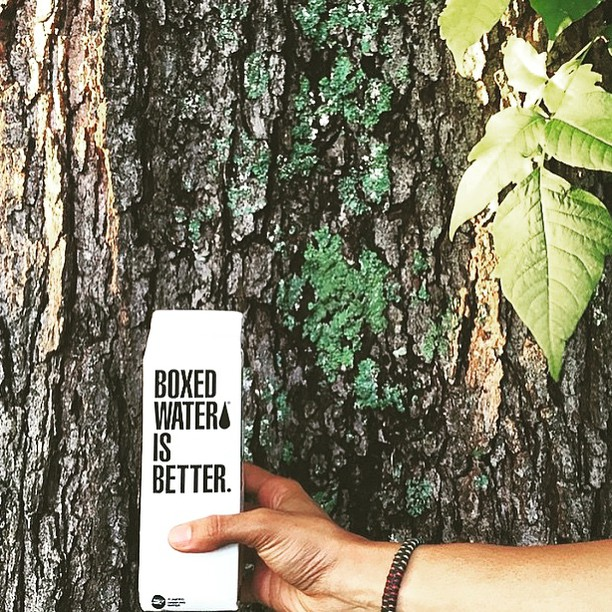 Don't forgot, for every @boxedwater photo you post, our friends at @nationalforests will plant two trees for you!