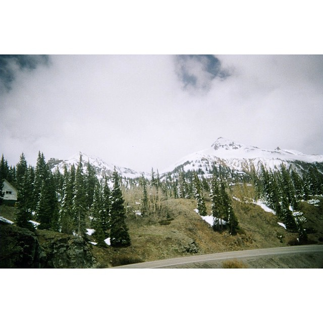35 mm disposable camera banger from brand ambassador @3rikhilb. Erik is currently living out of his truck skiing year round in Montana. Give the dude a follow! // #EverydayExposures #pinebrand #EverydayEquipment #ChroniclesOfPine