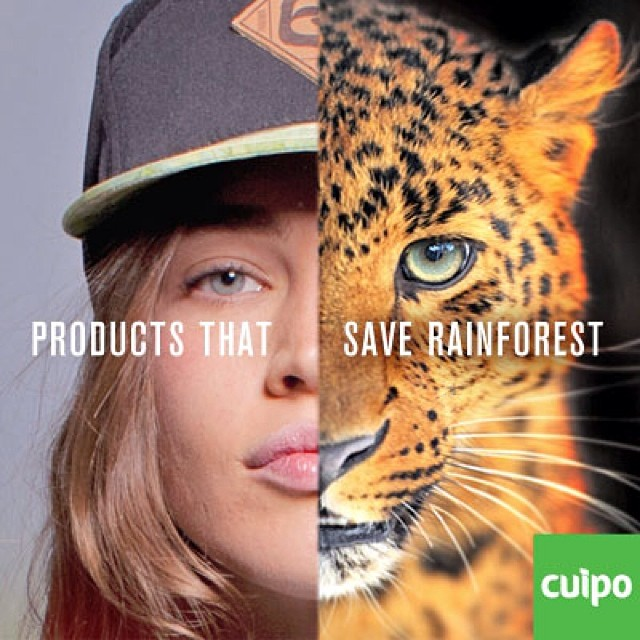 Products that save rainforest. #cuipo Cuipo.org #saverainforest