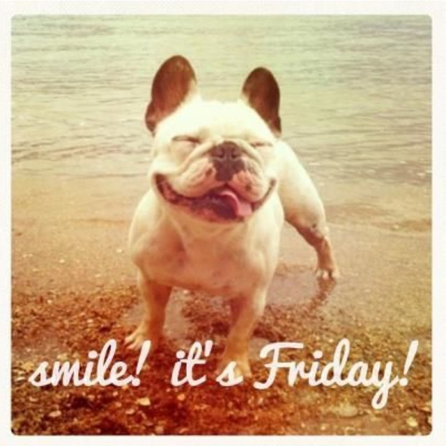 We luv Fridays! Tag a friend you'll be smiling with this weekend for a chance to be featured next week. #tagafriend #funfriday #smile #humor