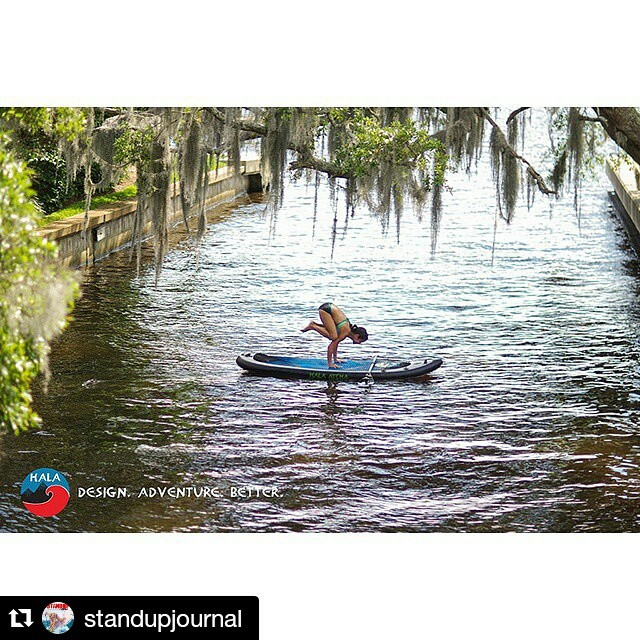 #Repost from @standupjournal ・・・ YogaSlackers using the Hala Atcha for the much difficult crow pose.  www.halagear.com