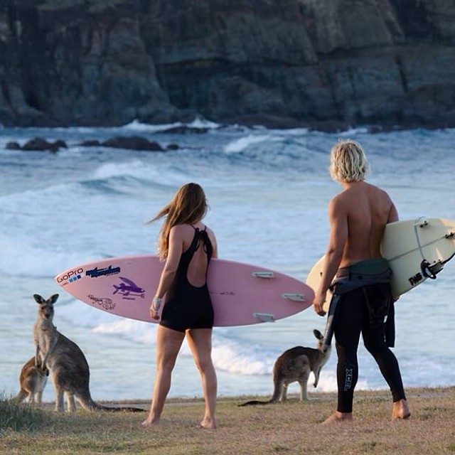 Lets hop into some surf ;-) #punny #australia #surfari @tommyfuller_ @patagonia @nmocean1
