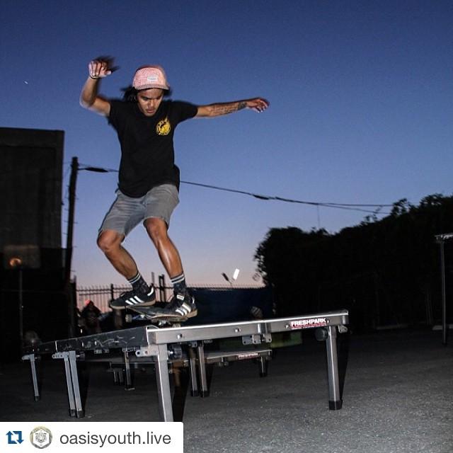 Freshpark Fun Box! #freshpark #funbox #skate