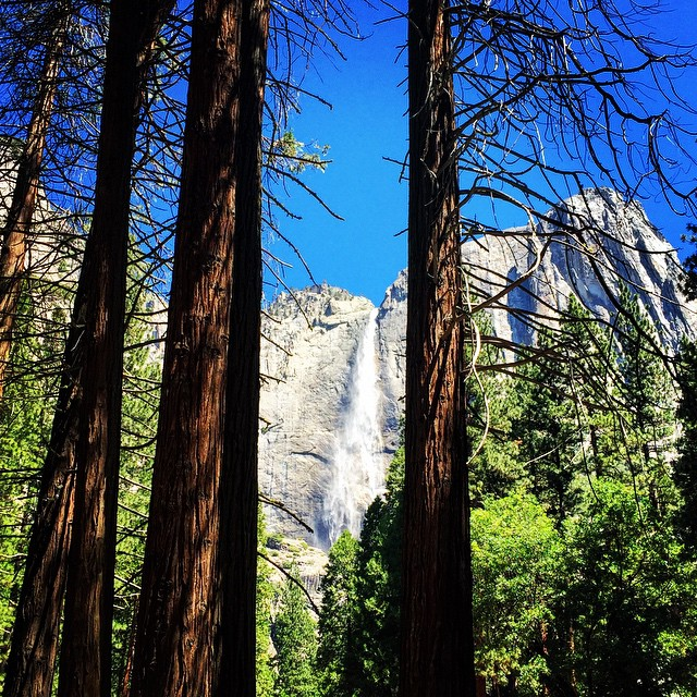 It's amazing how in nature (or anything for that matter) a change of perspective can totally change your view - the world is ever evolving and changing right before our eyes #Yosemite #YosemiteFalls #humpday #explore #exploremore #getoutside...