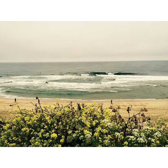in continuation of yesterday's post. report: poor and still some nuggets in norcal. @r00ts @brianfor44 @dspence78 good to surf together #awesome #awesomesurfboards #surfing #norcal