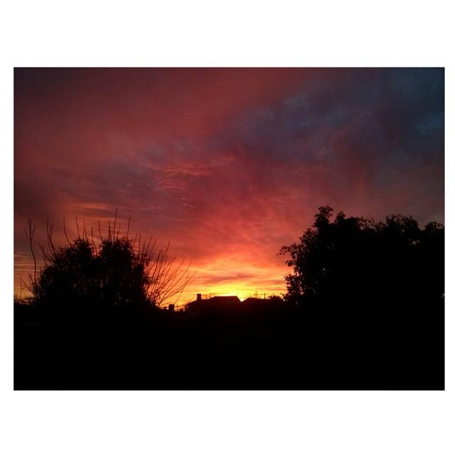 El cielo antesde apagarse se incendió. #atardecer #tramonto #sunset #invierno #inverno #winter #caeelsol #hermosor #cielo #sky #cielosdebuenosaires #instasky #ph #sinfiltro