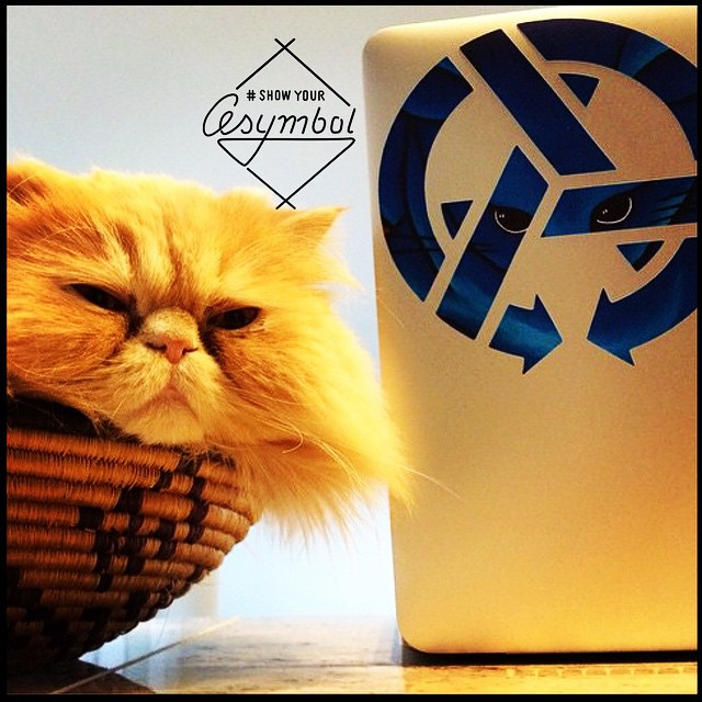 Where does your Asymbol art live?  Is it an ego booster for your cat?  Does it keep him company while you hunker over your computer all day?  Show us!  Throw the #showyourasymbol in the caption of your shot and it goes in the running for our monthly...