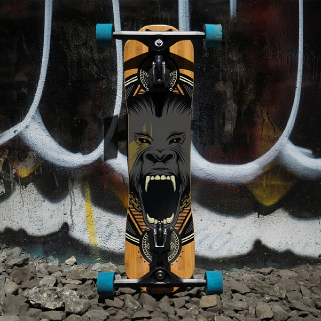 The Primal looking mean #Freebord #Snowboard the streets