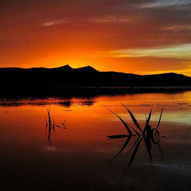 @gauchosdelmar -  En Tierra del Fuego