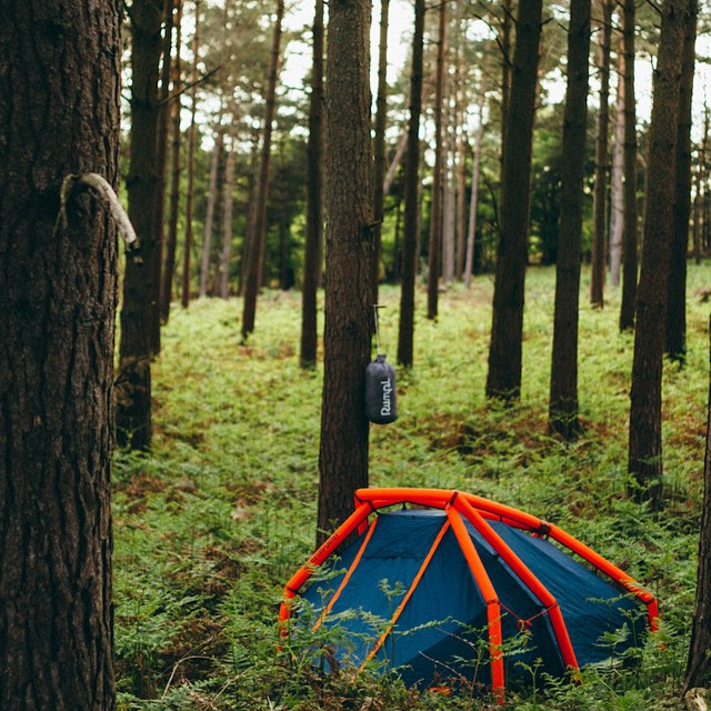 We reckon @tobybutlerphoto has found himself a nice patch of forest for the evening. Summer is here. #gorumpl