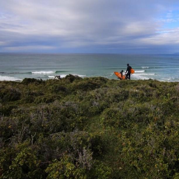 Bajando el acantilado para surfear las divertidas olas de Playa Dorada, Península Mitre.