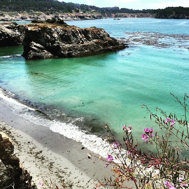 "Now I know where the paint color name ""sea foam green"" came from #beachhousecolors #inspiredbynature #mendocino #norcal #california #beautiful #pacificocean"