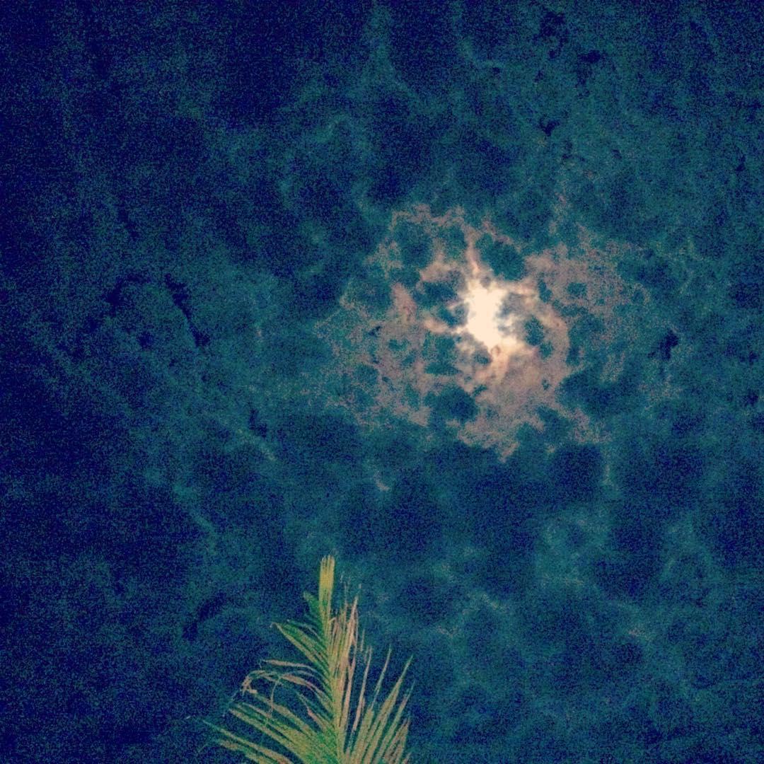 Whoa, #moon!
