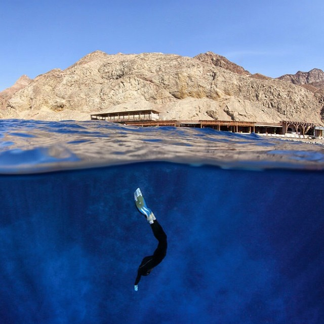 Into the blue. #freediving #bluehole #egypt #diving