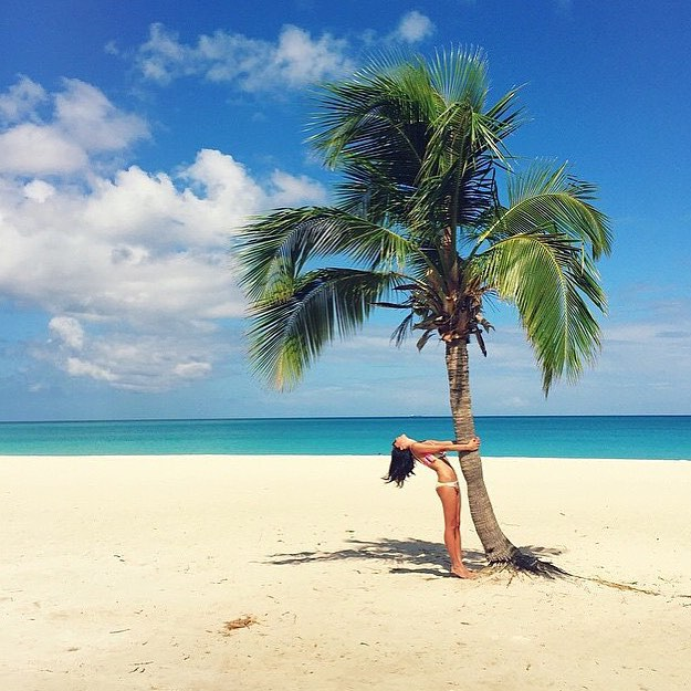 Summer is... tree hugging || tropical vibes care of @nextstopcoconut
