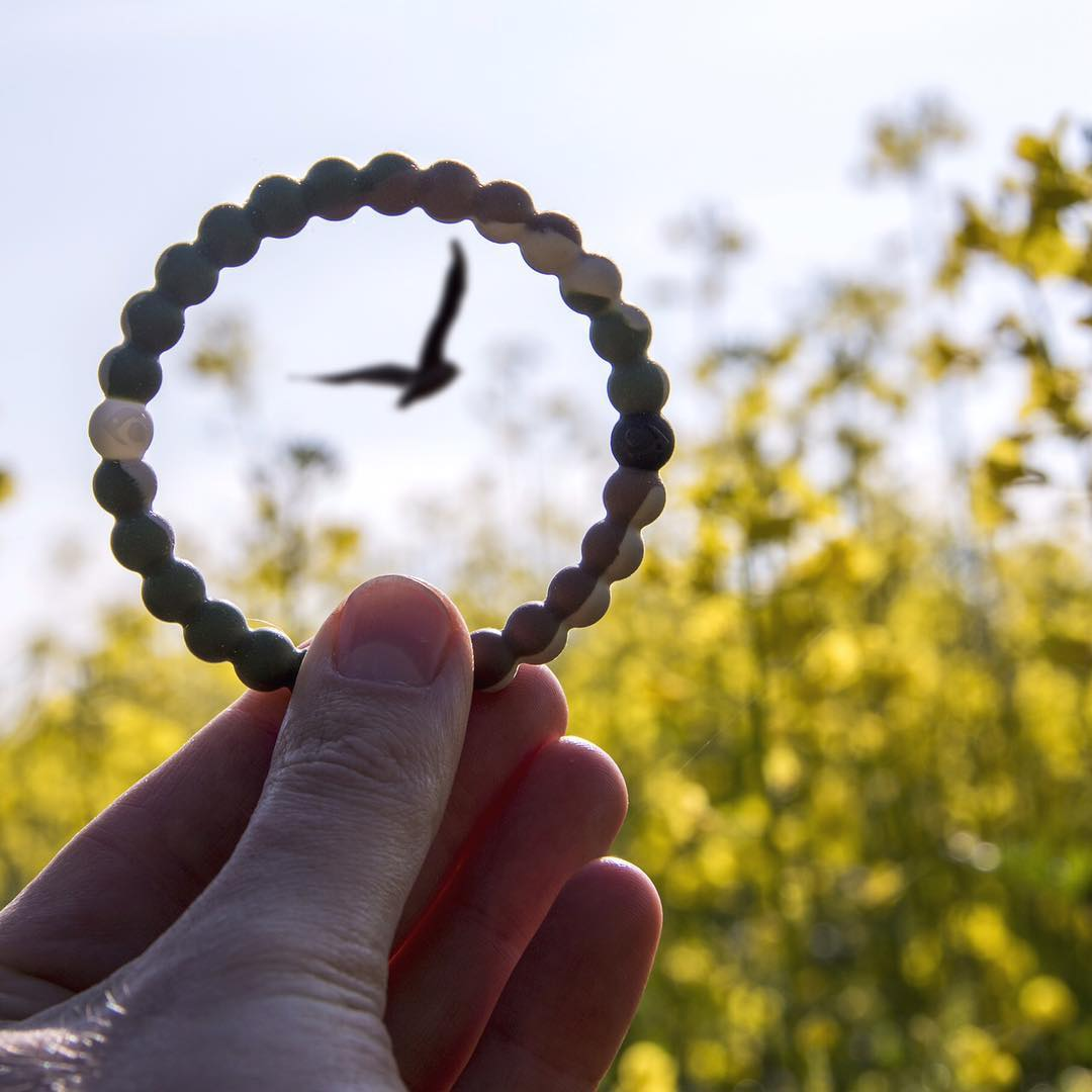Flyin' solo #livelokai Thanks @thegoodly