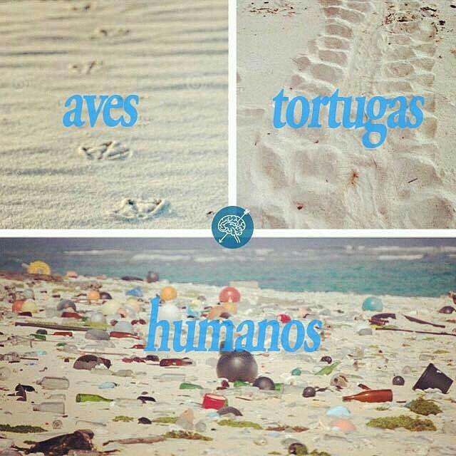 @econoargentina -  Cuidemos nuestras playas!