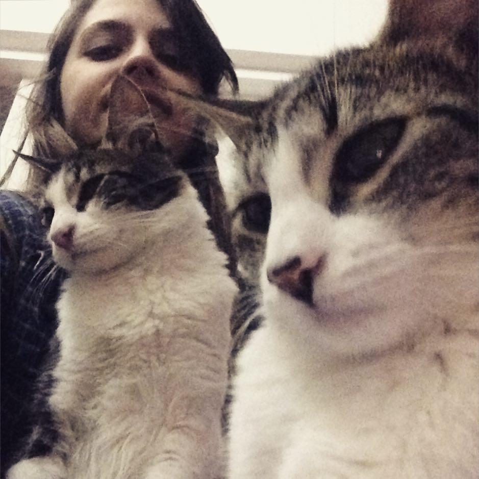 Lima limon y yo #reflex #trio #cat #duo #gato #amorgatuno