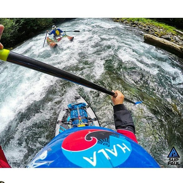 Happy 4th of July!!! Hope you are out celebrating our independence day on the river!! ・・・ @suppaul_pics Chasing little boats on the McKenzie River today #halagearsup #seatosummit #astralbrewers #stohlquist #astralwhitewater