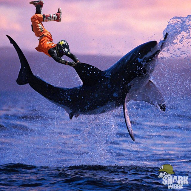 Who's ready for #SharkWeek?