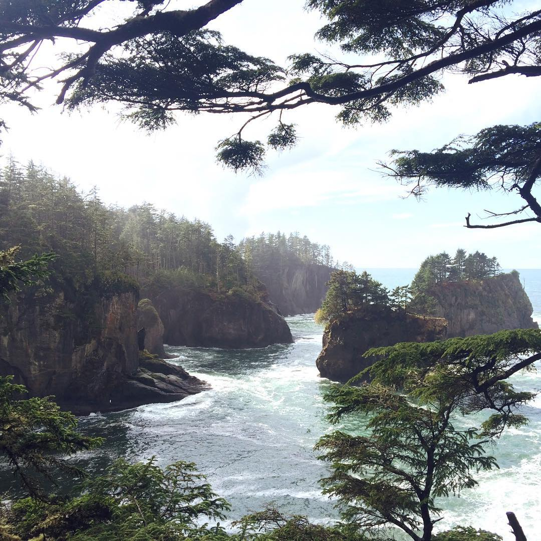 Post Neah Bay surf exploration: Cape Flattery // These micro islands are the gathering location for dozens of gray and orca whales