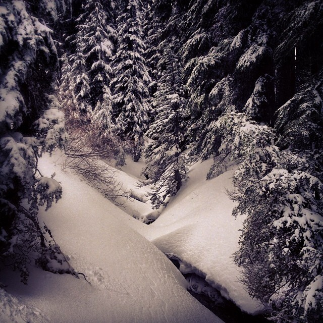 Winter has returned in the #PNW and #Rockies . @eldulche Get outside and enjoy some .