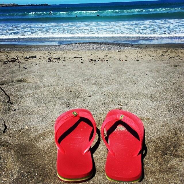 #sigaoverao #followthesummer #sigaelverano #beach @eliaperbellini