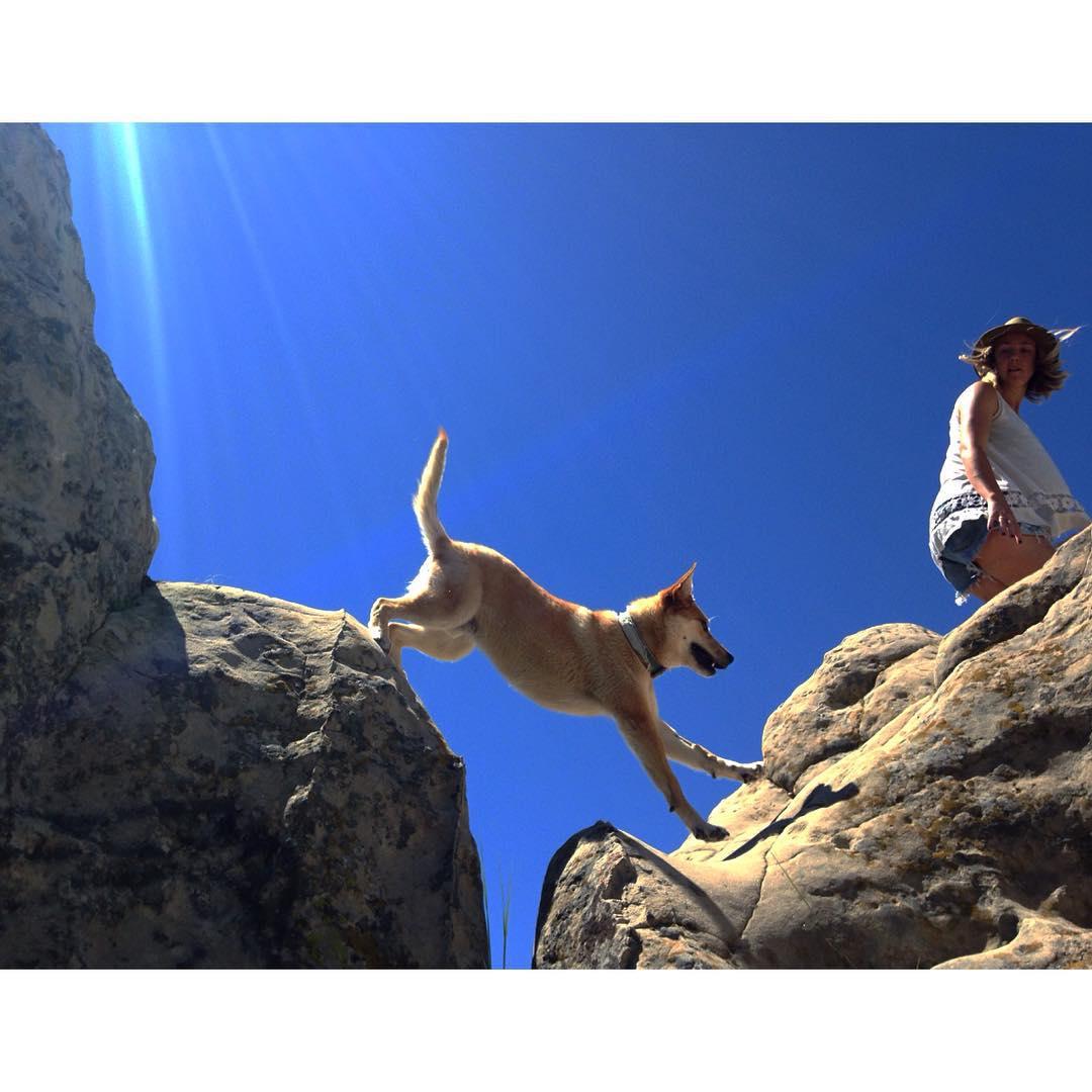 On Saturdays we jump around on rocks.