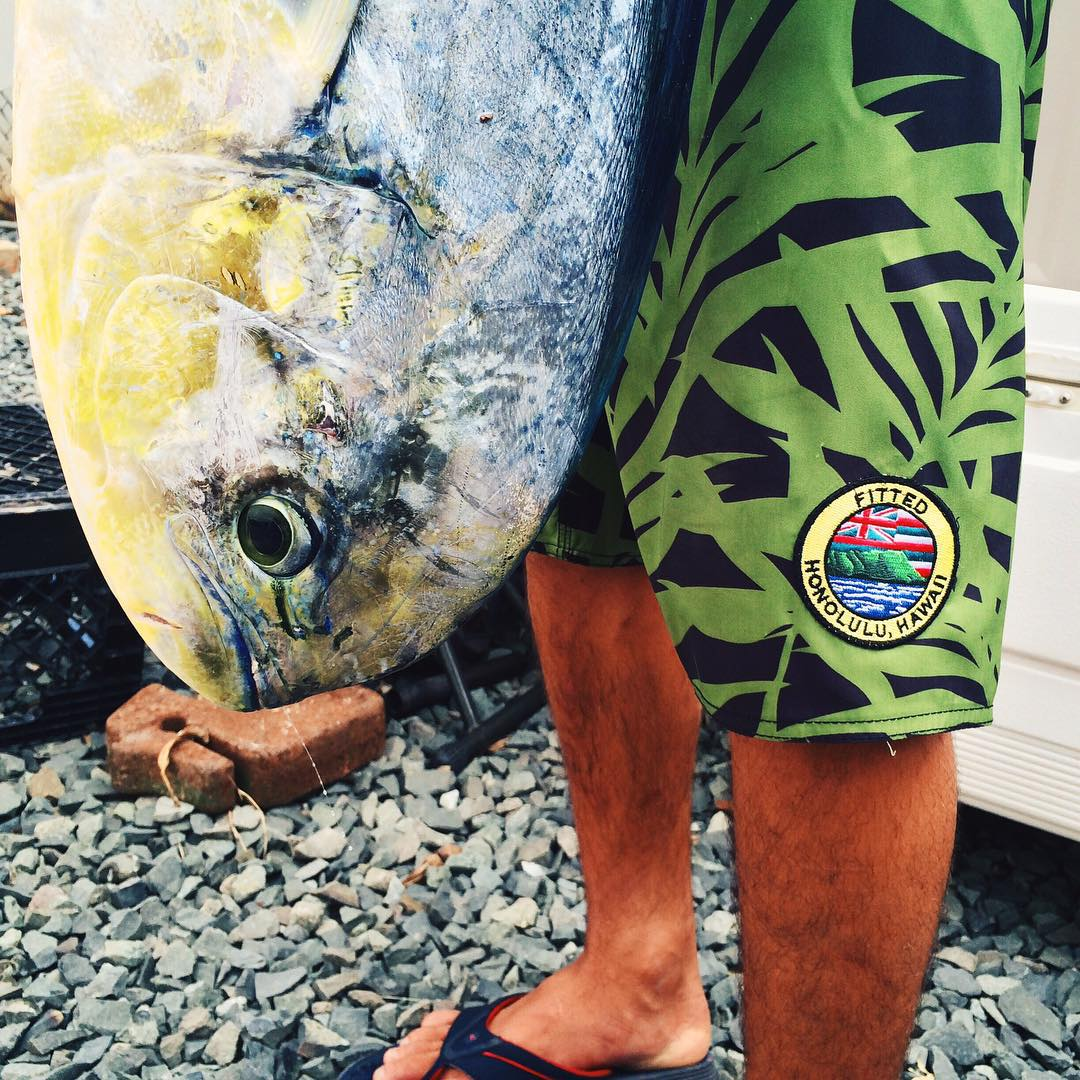 NOREP x FITTED. Coming soon: a collaboration inspired for more than just surfing! | @fitted #inspiredboardshorts