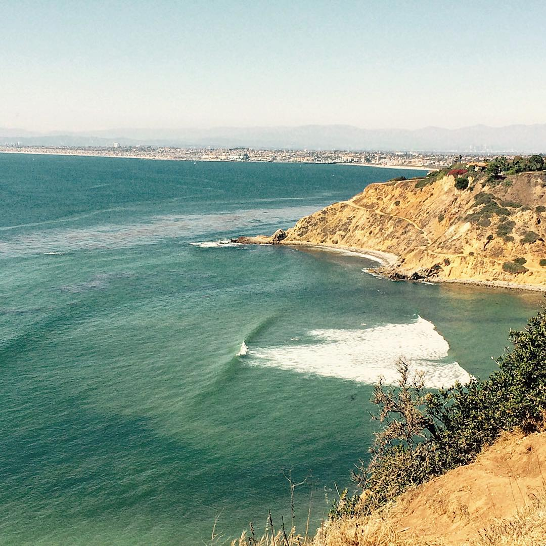 It's Friday. Get out and explore this weekend. Lonely left in LA. #uluLAGOON #left #losangeles #pv #surf #surfshops #socal