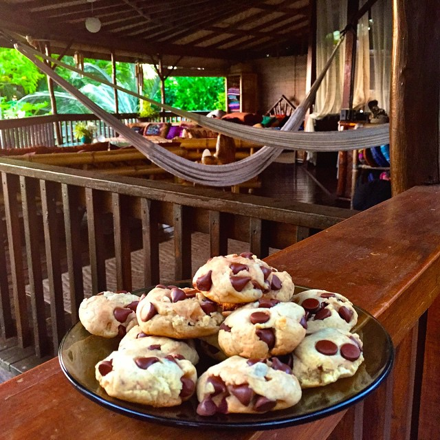 Baking cookies in home sweet grass shack Hawaii!  It's our secret family recipe but I'll let you in on it:) ✅2 1/2 cups gluten free flour ✅1/2 cup honey and 1/4 cup organic sugar ✅ 2 eggs or egg replacer ✅3/4 cup coconut oil (instead of butter) ✅1 tsp...