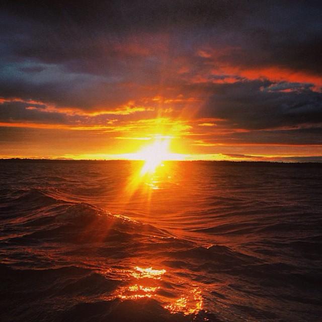 Dream beyond the horizon. #Flowfold