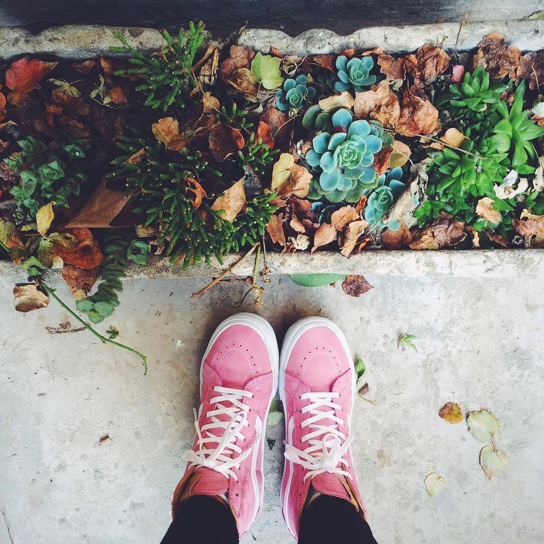 Color al invierno ☝