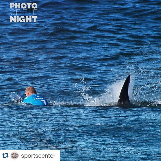 @sportscenter's #PhotoOfTheNight is @mfanno fighting off a shark during competition at the #JBayOpen yesterday.