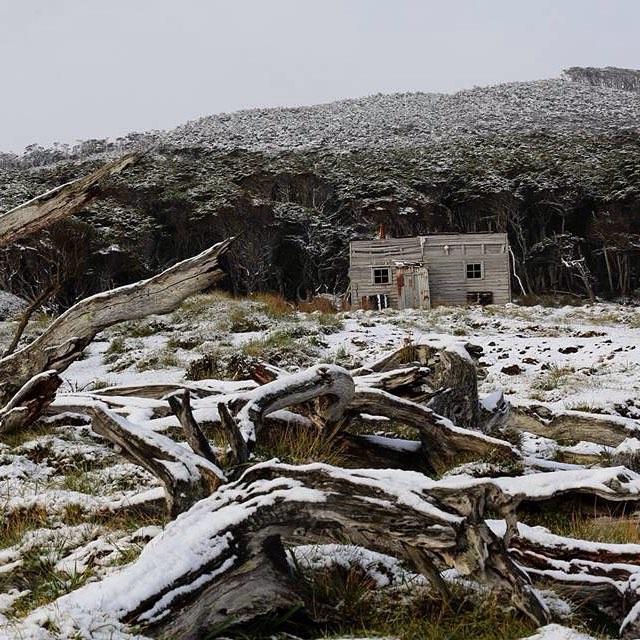 Rancho Tres Amigos después de la nevada.