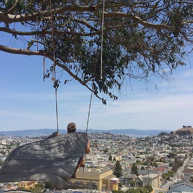 Flyin' high in San Francisco |