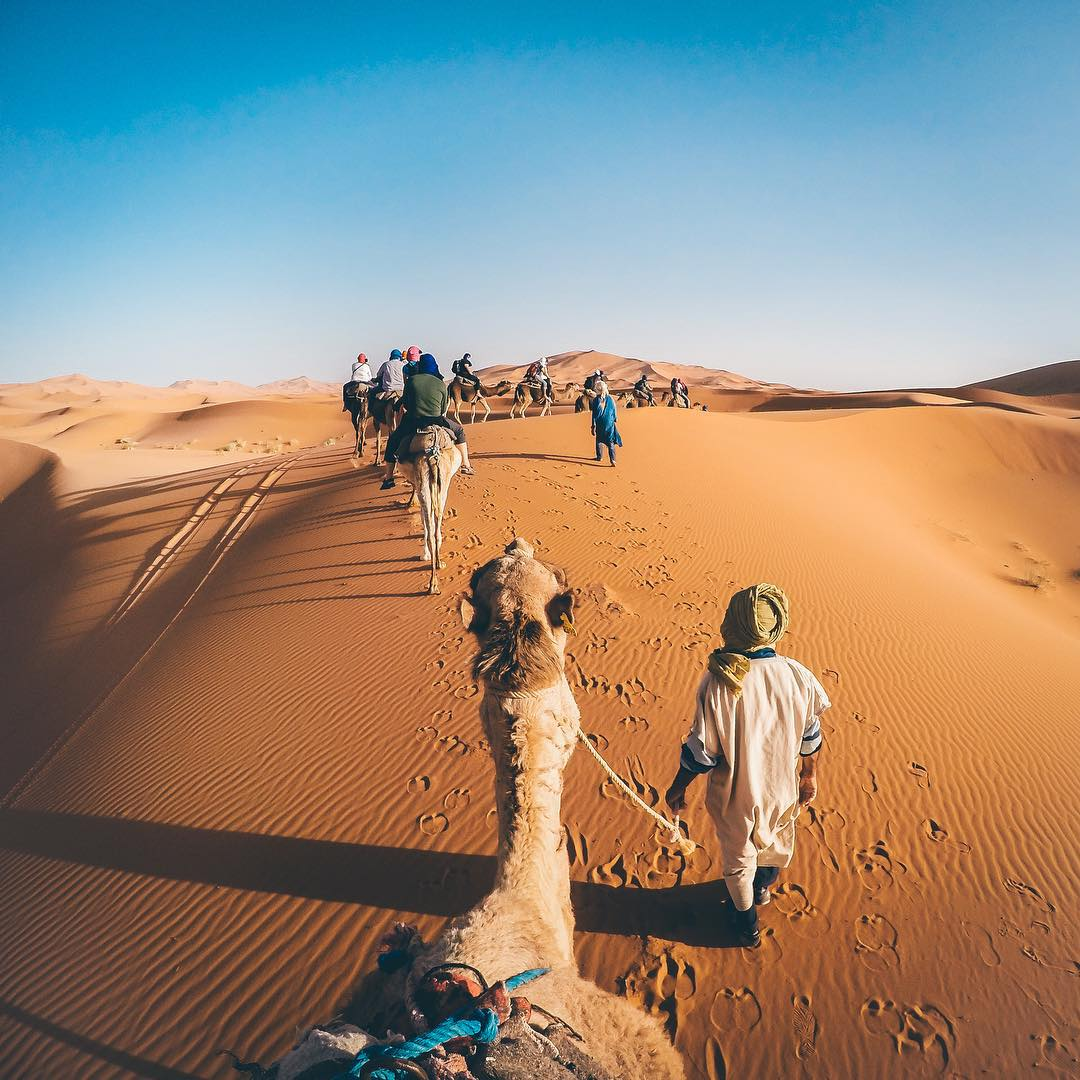 @mathayusdu does his #TravelTuesday from a camel train across the Sahara desert! #GoProTravel #Camel