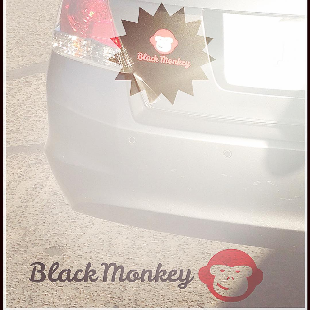 Black Monkey cada vez en mas lugares y más cerca tuyo!! Y vos, ya pediste tu calco?? @blackmonkeystore #alpargatas #calzado #colors #winter #design #monkeybrand #blackmonkey #onda #happyfeet #travel #live #monkey