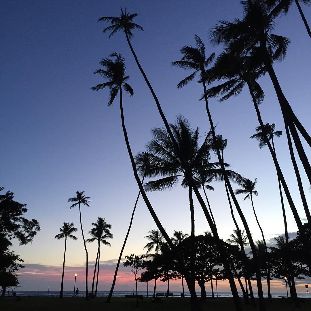 Livin's easy when it's easy livin #beachvibes #cityvibes #sunset