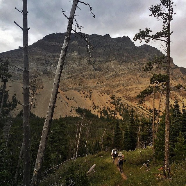 ASC superhero @julieahotz begins her walk from #GlacierNationalPark to the Pacific by crossing through valleys of green carved out by glaciers.  Julie is not only dedicating herself to this journey, but also supporting ASC by raising awareness and...