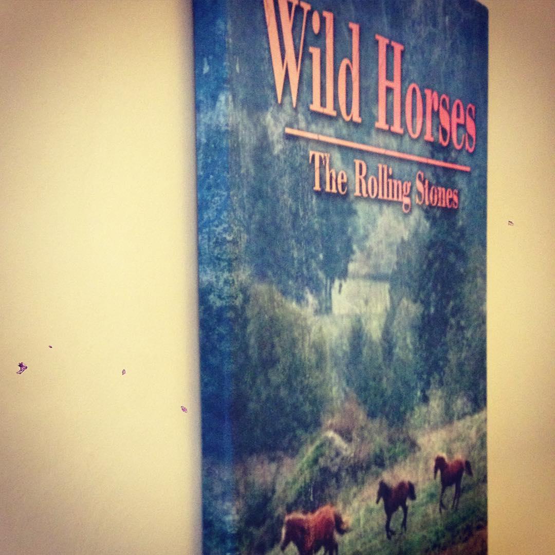 #chilimango #design #music #therollingstones #wildhorses #horses #cuadros
