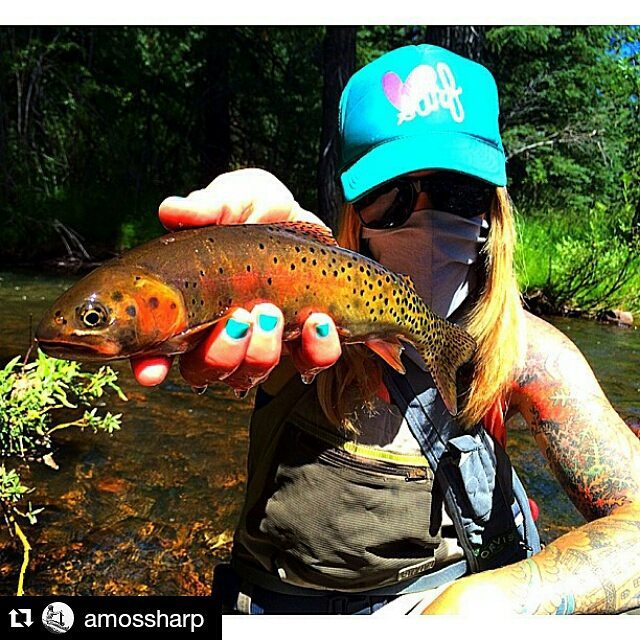 Here fishy, fishy #shennanigans #repost from @amossharp #fishing #luvsurf #outdoor #adventure #explore  #fishtastic #nicehat
