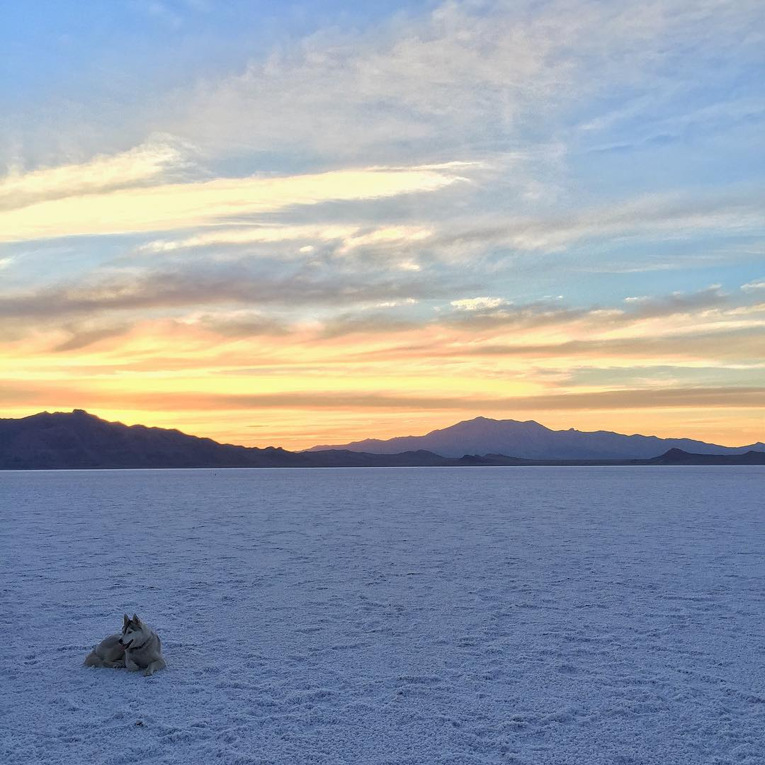 Had a fun afternoon/evening at the Bonneville Salt Flats in Utah today doing a photo project that you'll see next week. It's tough to take a bad picture here, the lighting and the scenery is always so epic. #sunsetporn #saltflatporn...