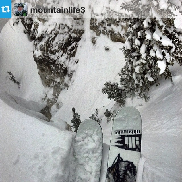 #Repost from @mountainlife3 on the HOJI's right where they belong.