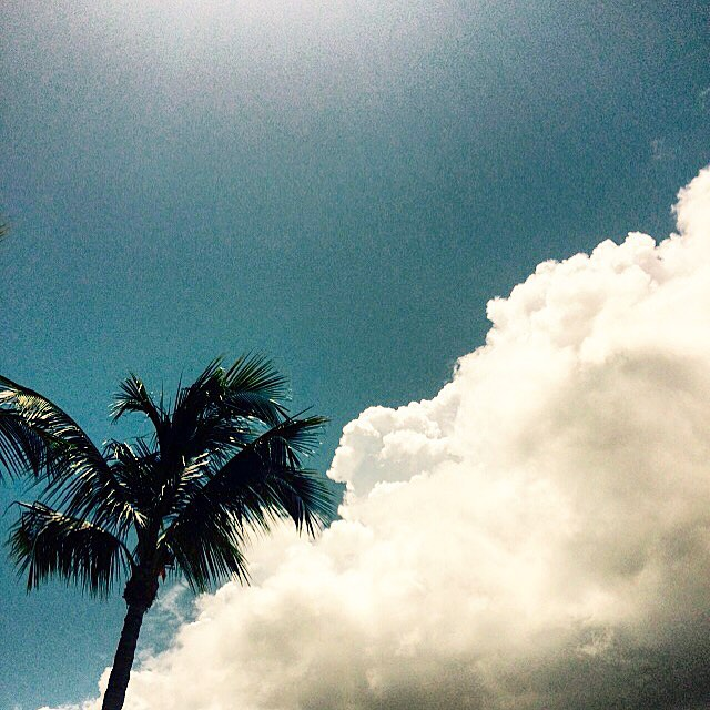 South Florida skies! #beachculture #uluLAGOON #sflorida #southflorida #familia #a1a #instagood #blueskies