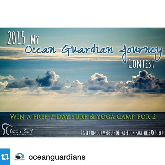 Follow @oceanguardians to get all this years My Ocean Guardian Journey Contest details!